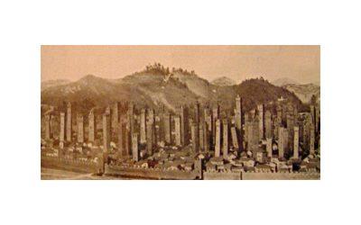 La foresta di pietra: passeggiata tra le torri di Bologna