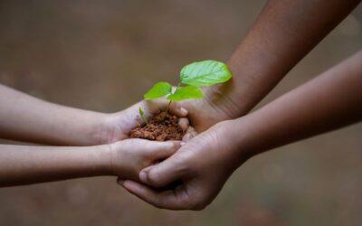 L'impegno sociale della Fondazione Oviv nel 2020